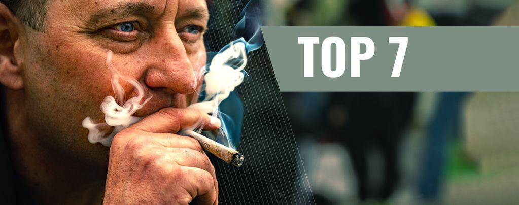 Cannabis Ideales Para Motivación Y Productividad