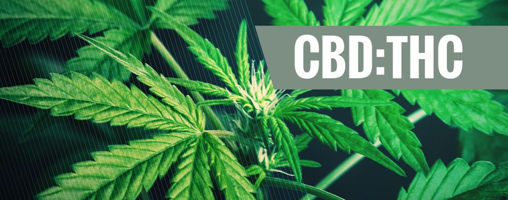 Ratios de CBD:THC