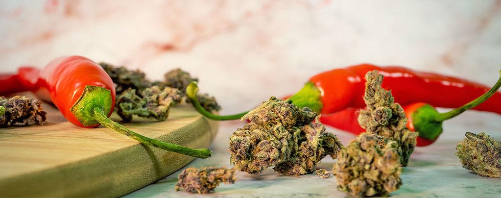 Los Sorprendentes Beneficios De Combinar Marihuana Y Guindilla