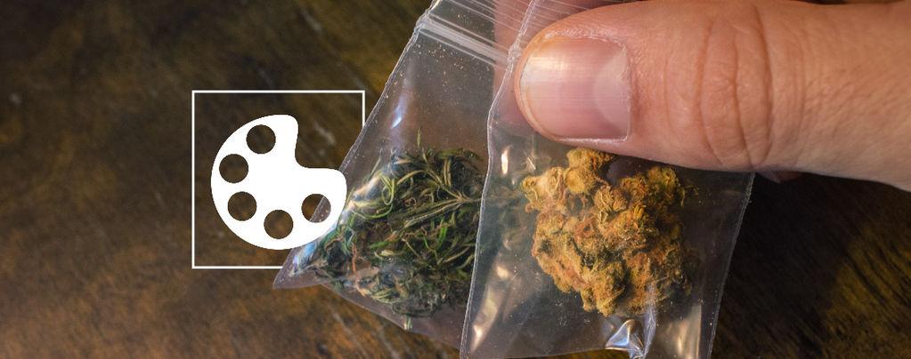 Los Diferentes Colores De La Marihuana
