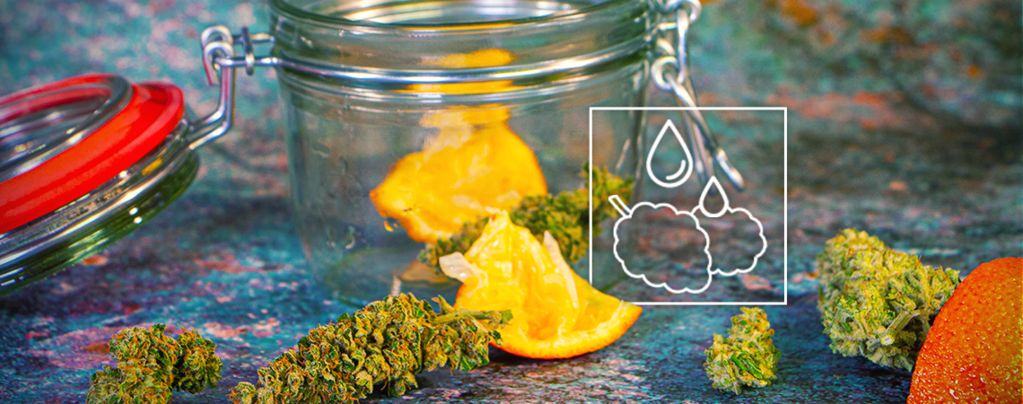 Marihuana Demasiado Seca
