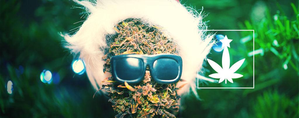 Fiesta De Navidad Cannábica