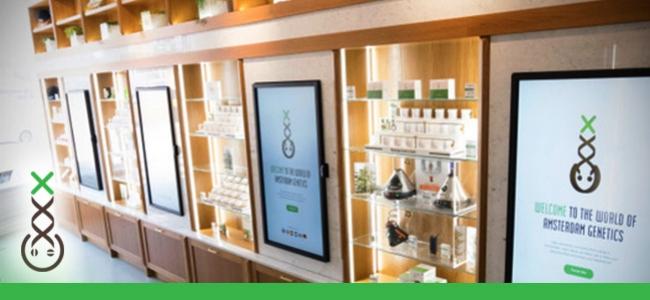 Punto De Información De Coffeeshops Boerejongens
