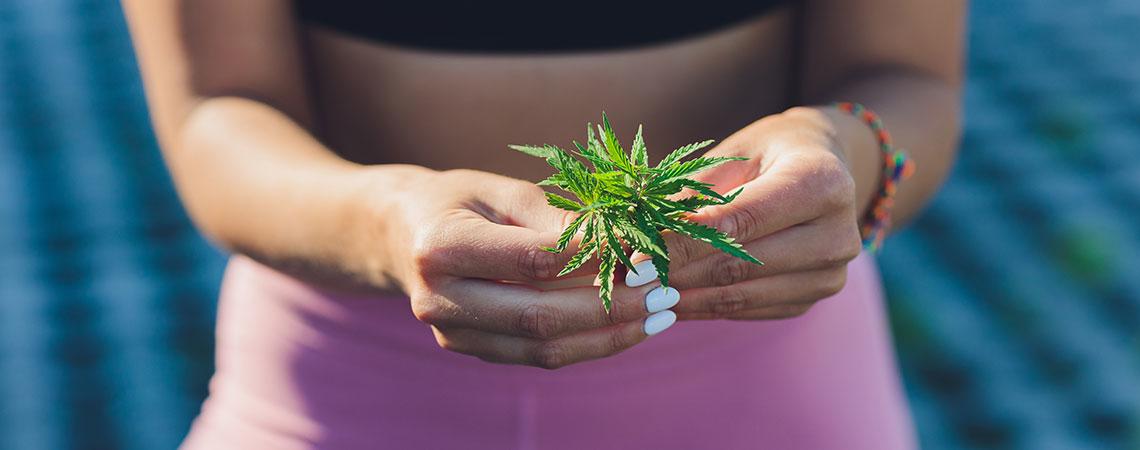 Marihuana Ayudarte Perder Peso