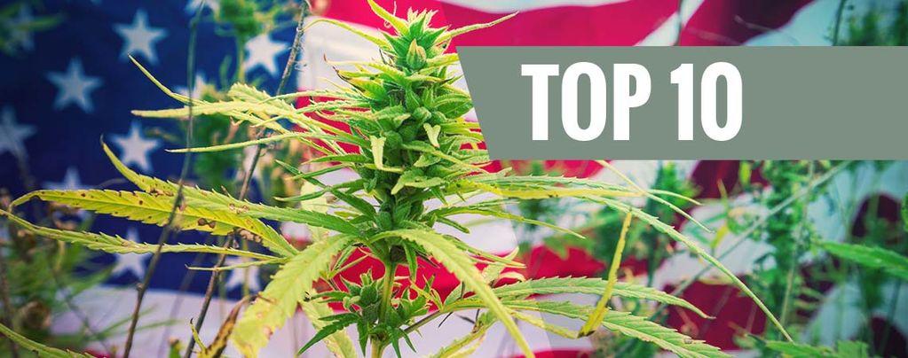 Top 10 De Variedades De EE.UU.