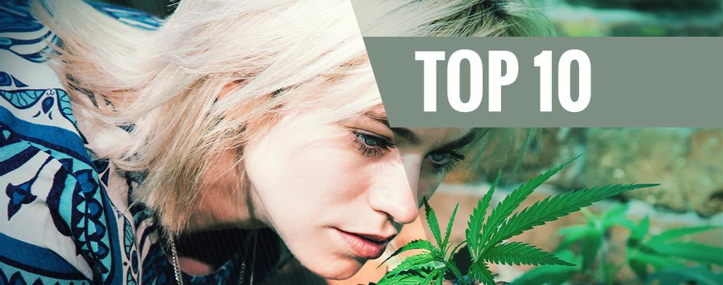 Top 10 De Variedades De Cannabis