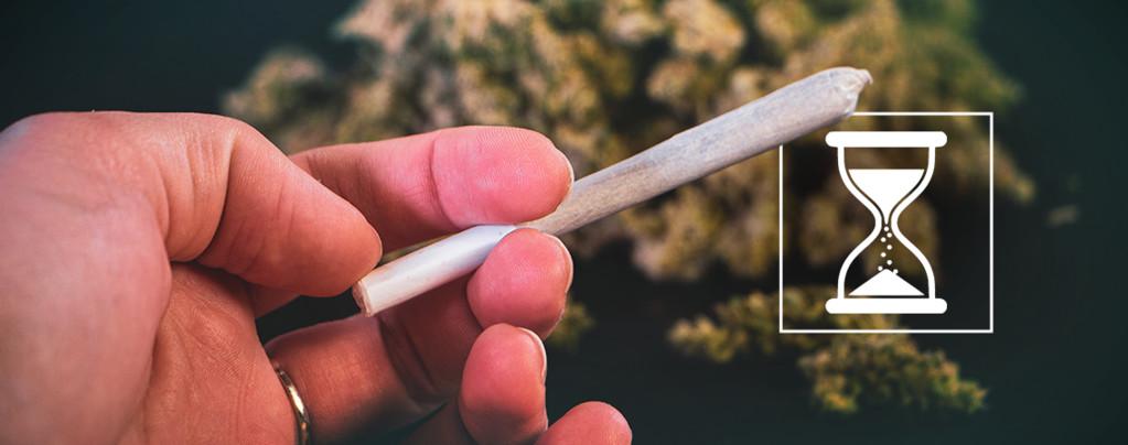 Caduca La Marihuana