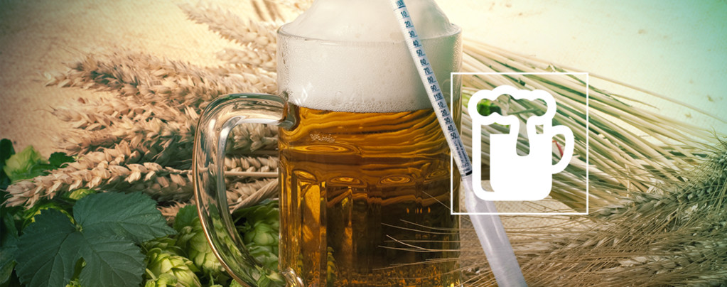 Hidrómetro Vinoferm: 3 escalas (Cerveza)