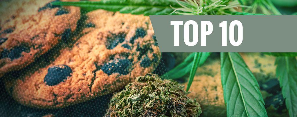 Los 10 Errores Más Comunes Cuando Se Cocina Con Cannabis