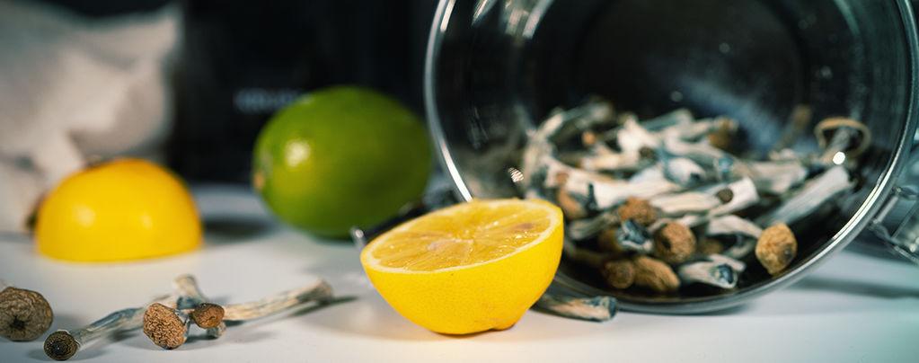 Cómo Hacer Lemon Tek Para Acelerar Tu Viaje Con Setas/Trufas Alucinógenas