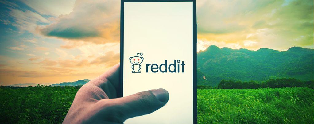 Top 10 De Comunidades De Reddit Sobre Cannabis