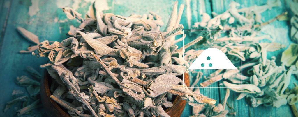 Cómo Hacer Extracto de Salvia Divinorum con Hojas Secas
