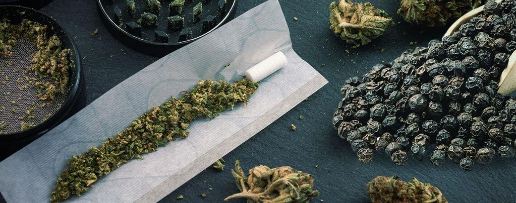 Pimienta Negra & Cannabis