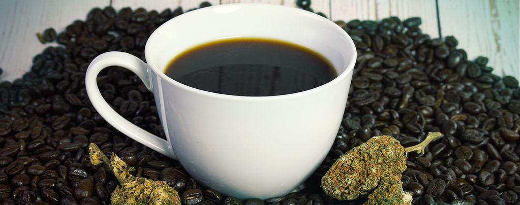 Por qué el Cannabis y el Café Van Muy Bien Juntos