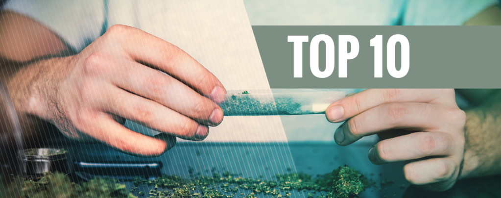 Top 10 de Razones para Dejar el Tabaco y Fumar Marihuana Pura