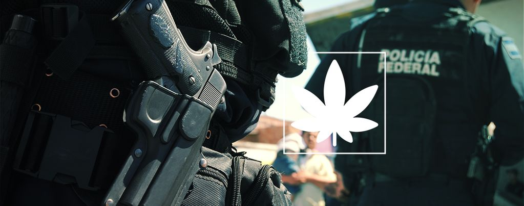 Estudio: La Guerra Contra las Drogas es un Completo Fracaso