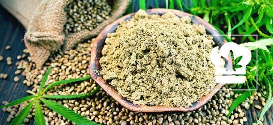 Cómo Hacer Harina De Cannabis