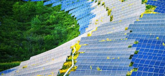 Los Paneles Solares Podrían Revolucionar el Cuarto de Cultivo