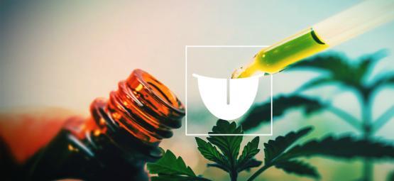 Por Qué Consumir Tintura De Cannabis Por Vía Sublingual Es Lo Mejor