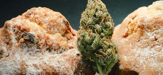 Renacimiento de comestibles de cannabis