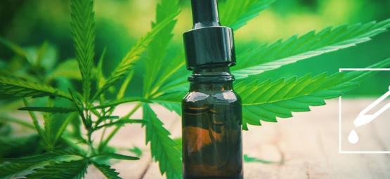 Cómo Hacer Una Tintura De Cannabis: Guía Paso A Paso