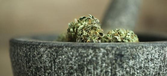 10 Maneras De Picar Marihuana Sin Grinder