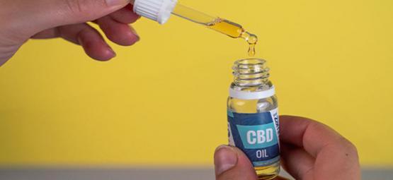Beneficios Del Aceite De CBD: ¿Deberías Usarlo?