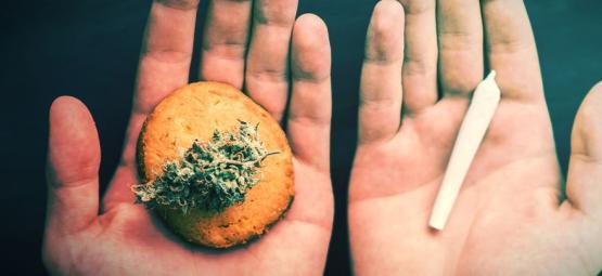 5 Formas De Consumir Marihuana Sin Fumarla