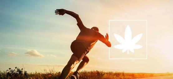 Efectos del cannabis en el rendimiento deportivo