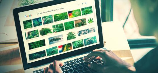 Las Mejores Páginas Web Para Fumetas (Actualización 2021)