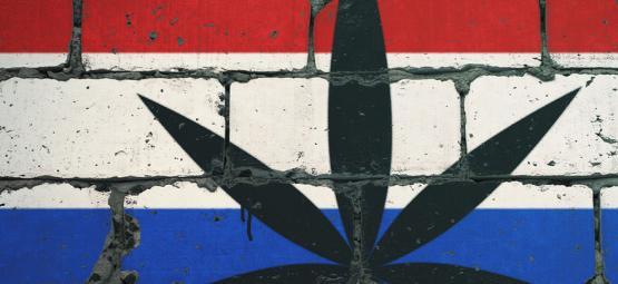 Los 10 Mejores Lugares Para Fumar En Holanda