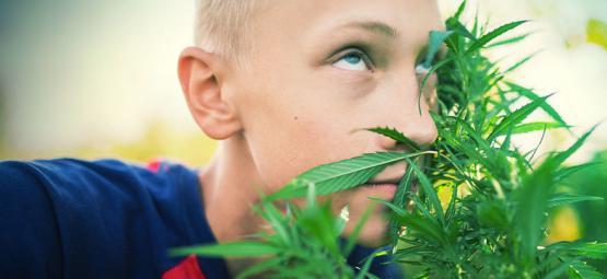 Cómo Colocarte Sin Consumir Cannabis