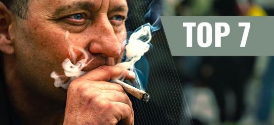 7 Cepas De Cannabis Ideales Para Elevar Tu Motivación Y Productividad