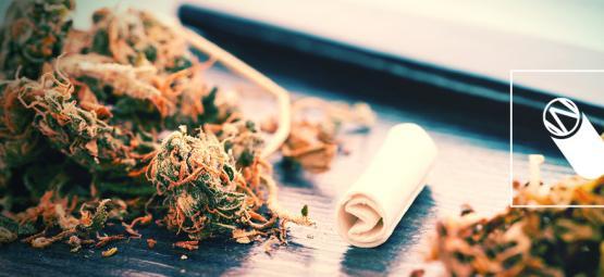 Cómo Hacer El Filtro Perfecto Para Un Porro Y Mejorar Tu Fumada