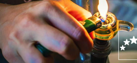 Las Mejores Cepas De Cannabis Para Consumidores Y Cultivadores Experimentados