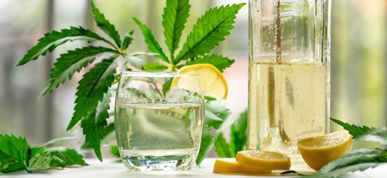 Cómo hacer un Gin Tonic con marihuana
