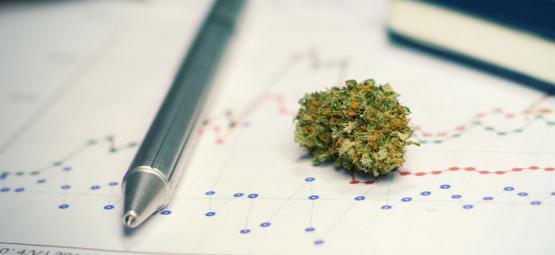 Los pros (y contras) de consumir cannabis para estudiar o entrenar