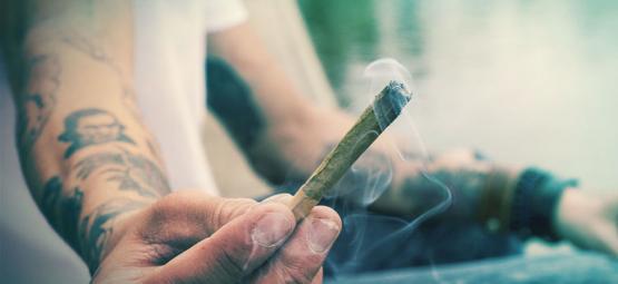 ¿es Posible Alucinar Al Ingerir O Fumar Marihuana?