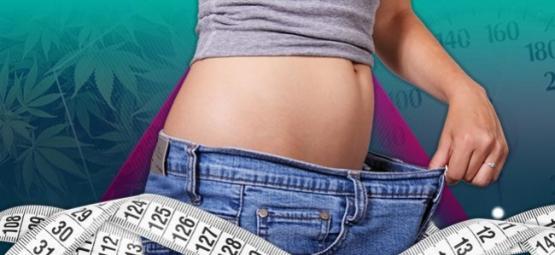 Las 5 mejores hierbas para ayudarte a perder peso