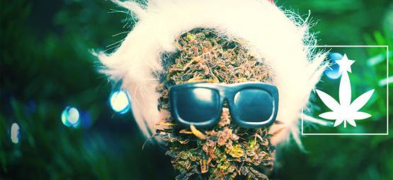 Cómo Organizar Una Fiesta De Navidad Cannábica