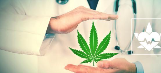 ¿Cuál Es La Mejor Manera De Consumir Marihuana Medicinal?