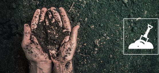 ¿Qué Es El Sustrato Vivo Orgánico Reciclado (ROLS) Y Cómo Prepararlo?