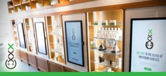 Punto De Información De Coffeeshops