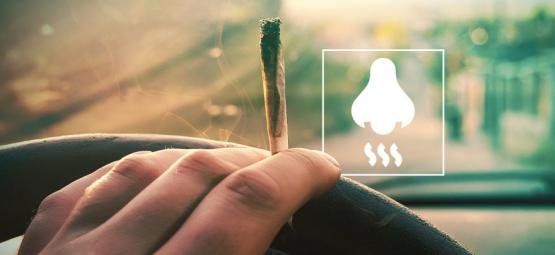 Cómo Eliminar El Olor A Marihuana Del Coche