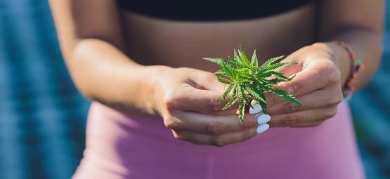 ¿Puede La Marihuana Ayudarte A Perder Peso?