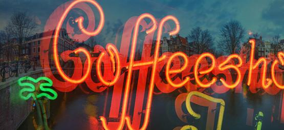 Visita De Zamnesia A Los Coffeeshops De Ámsterdam