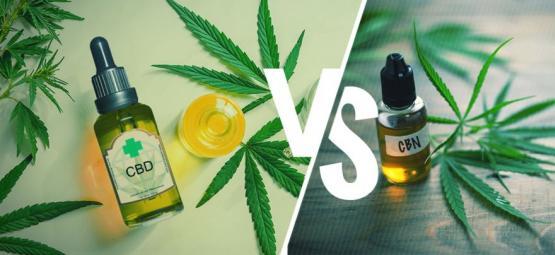 CBD y CBN: ¿Cuál Es La Diferencia?