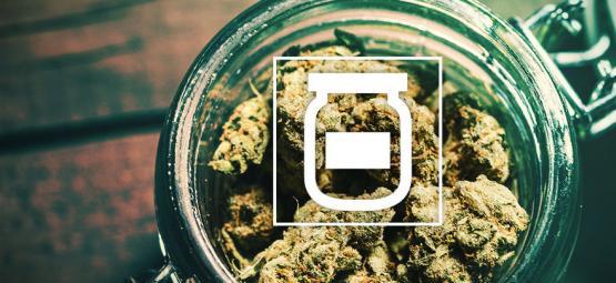 Cómo Evitar El Moho Al Almacenar Marihuana