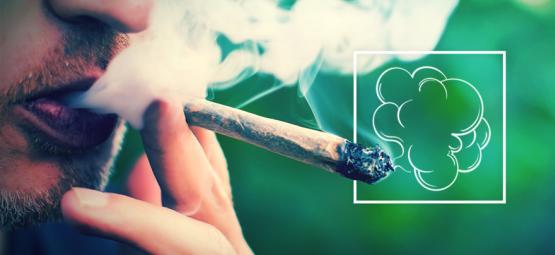 Producción De Nubes Y Cannabis