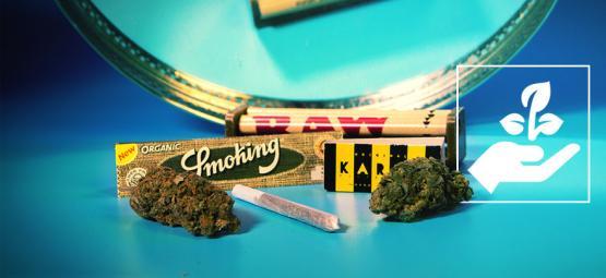 4 Accesorios Ecológicos Para Fumadores De Cannabis
